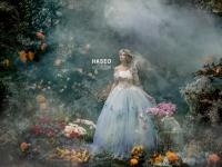HASEO写真展『美しい写真絵本の世界』