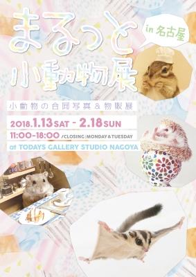 まるっと小動物展 in 名古屋