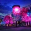 第33回全国都市緑化よこはまフェア 「人と木々とクリスタル花火」