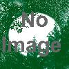 ブロードウェイミュージカル「スウィーニー・トッド」フリート街の悪魔の理髪師(東京公演)