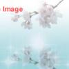 日本橋 桜フェスティバル ~ビューティフル日本橋~