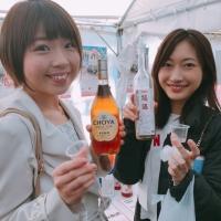 厳選 梅酒まつりin天王洲キャナル