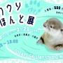 カワウソほんと展 in 名古屋